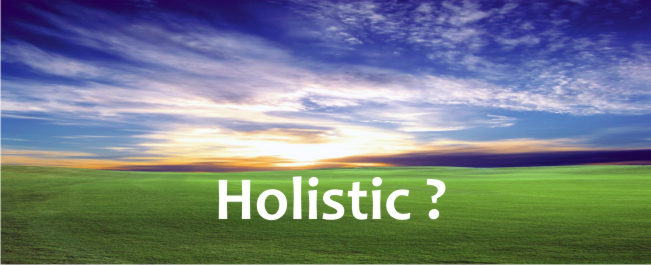 Holistic meaning and usage